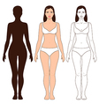 woman body outline vector image
