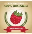 Organic Raspberry vector image