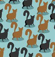 Back Cat seamless pattern Pets background Animal vector image