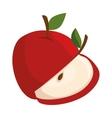 apple sliced fruit vector image
