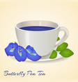Cup of Blue tea with Butterfly Pea flowers and vector image
