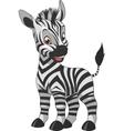 Cute funny zebra vector image