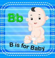 flashcard letter b is for baby vector image