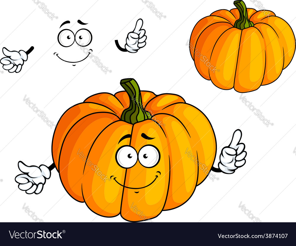Cartoon bright orange pumpkin vegetable vector