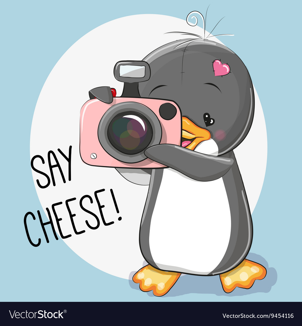 Penguin with a camera vector