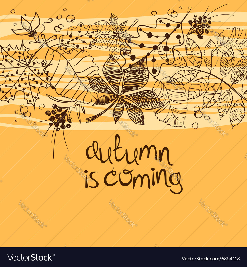 Sketch patterned autumn leaves concept vector