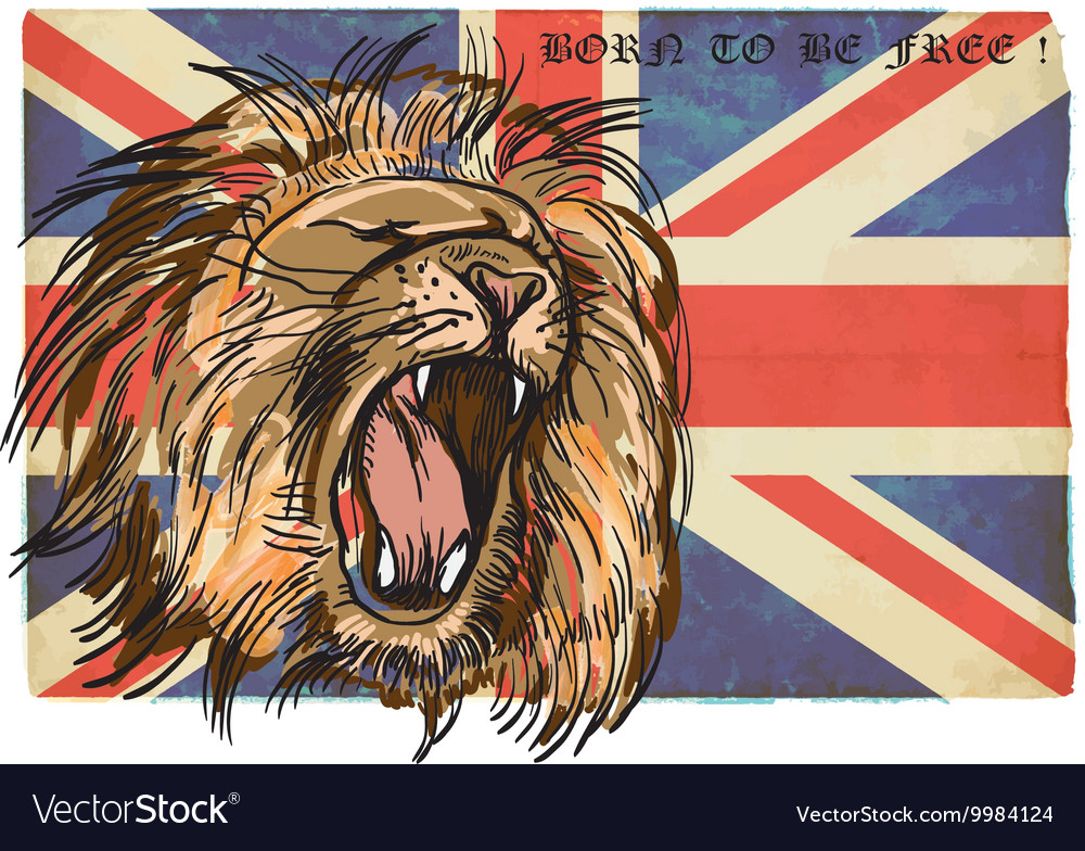Lion  an hand drawn vector