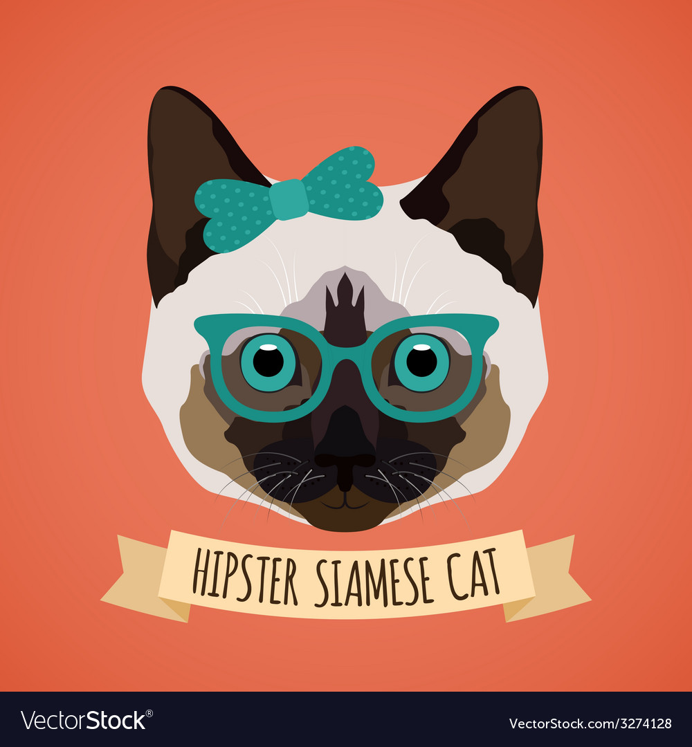 Hipster cat portrait vector