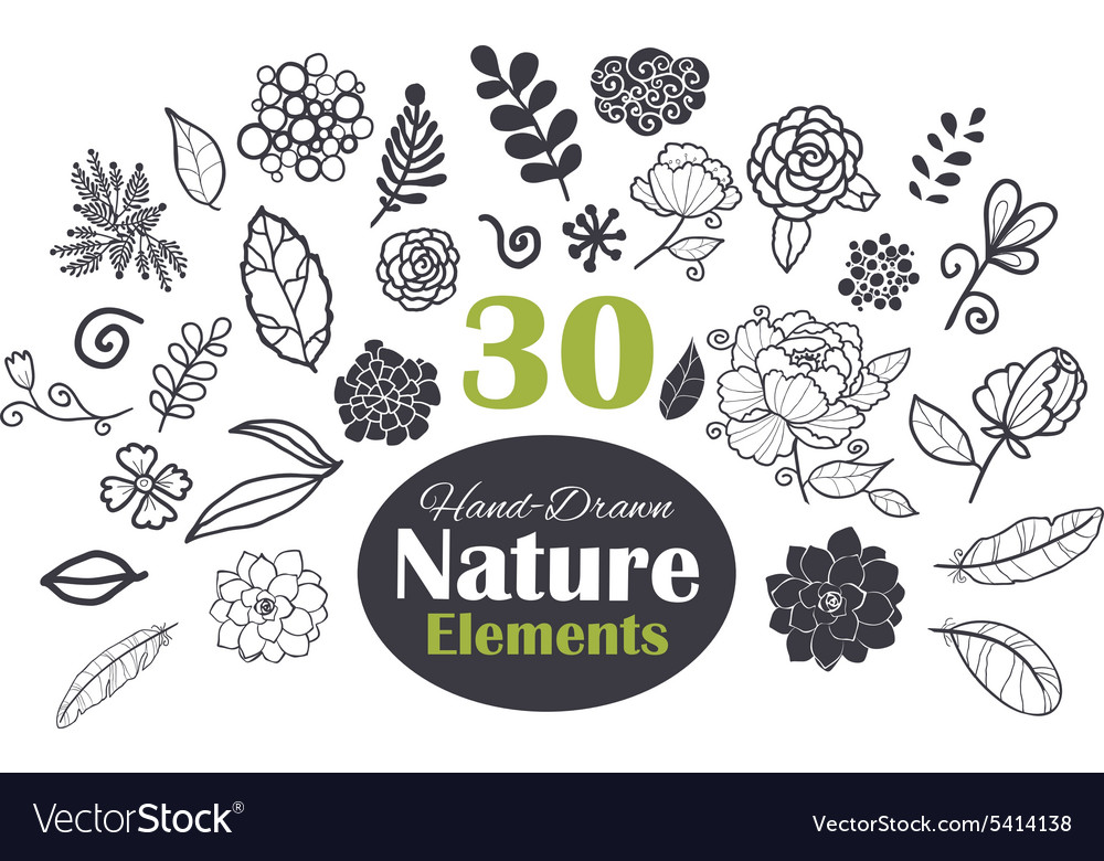 Black white natural elements 30 set vector