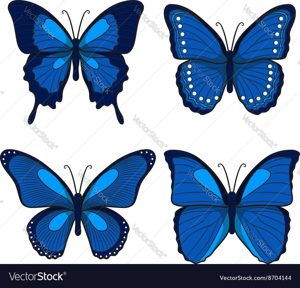 Set of blue butterflies vector