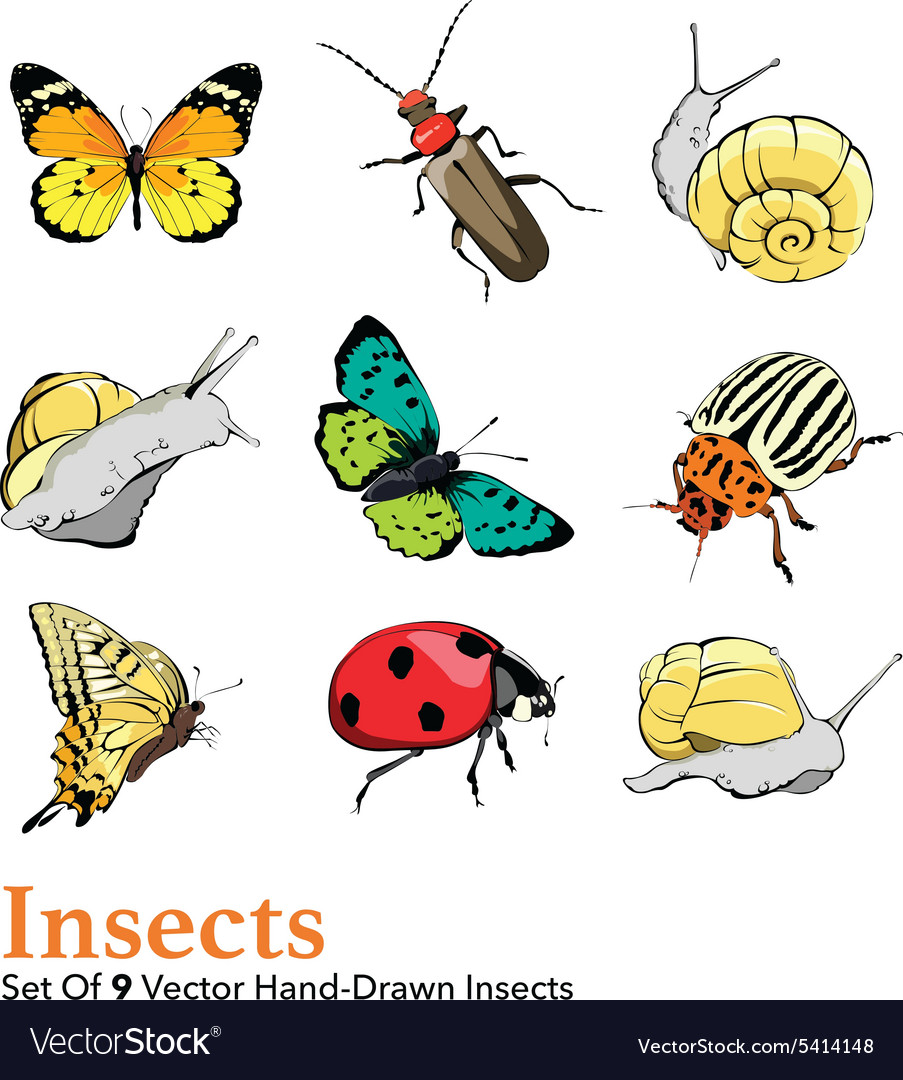 Insects 9 elements set seamless pattern vector