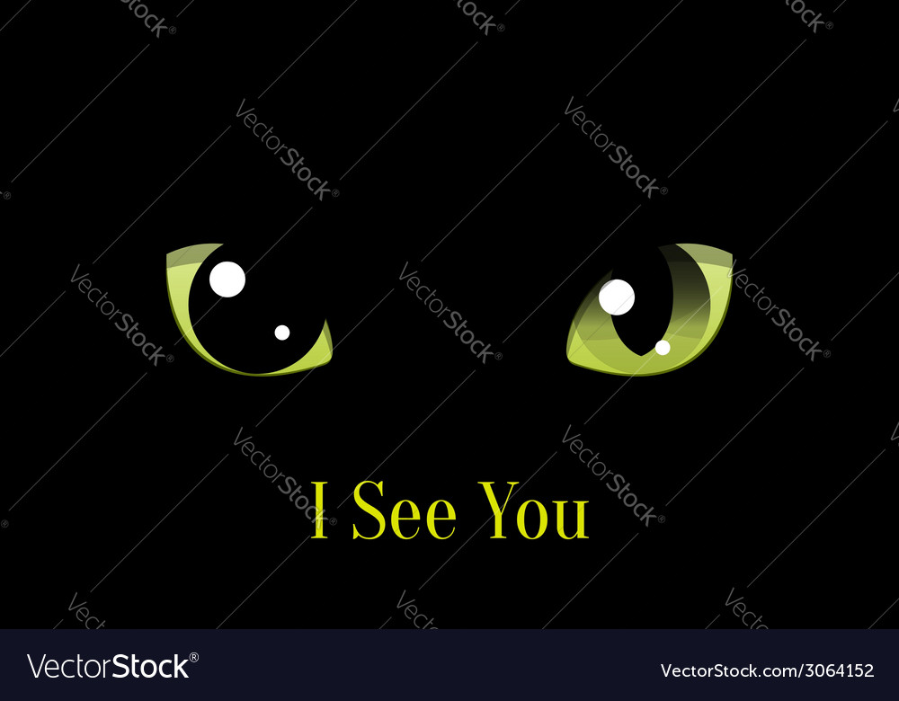 Cat eyes on black background vector