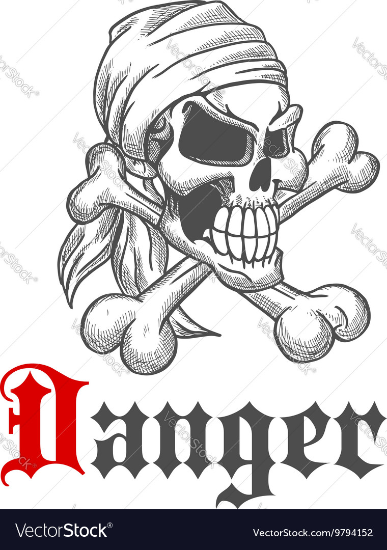 Pirate skull with crossed bones vector