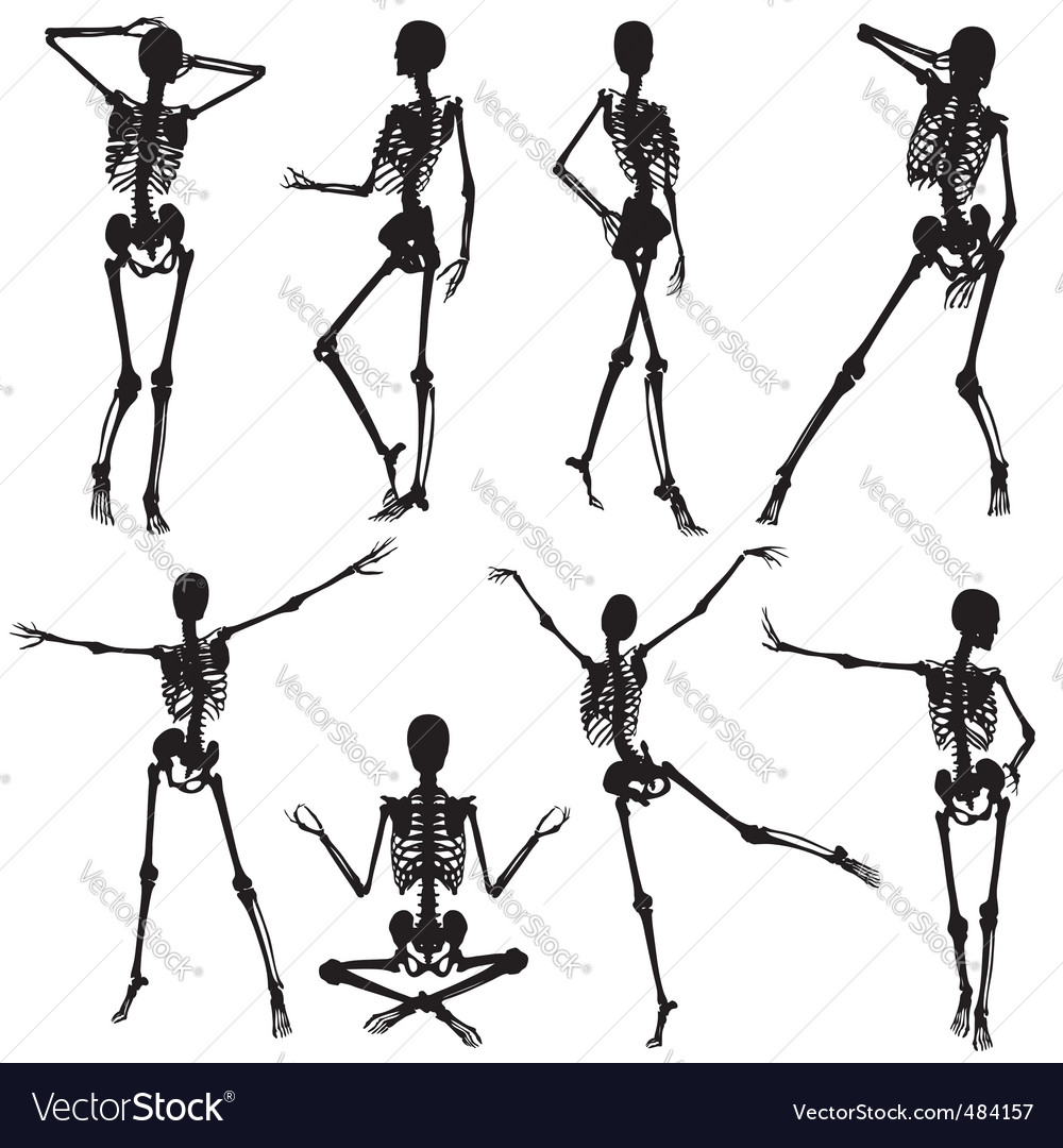 Skeleton silhouettes vector