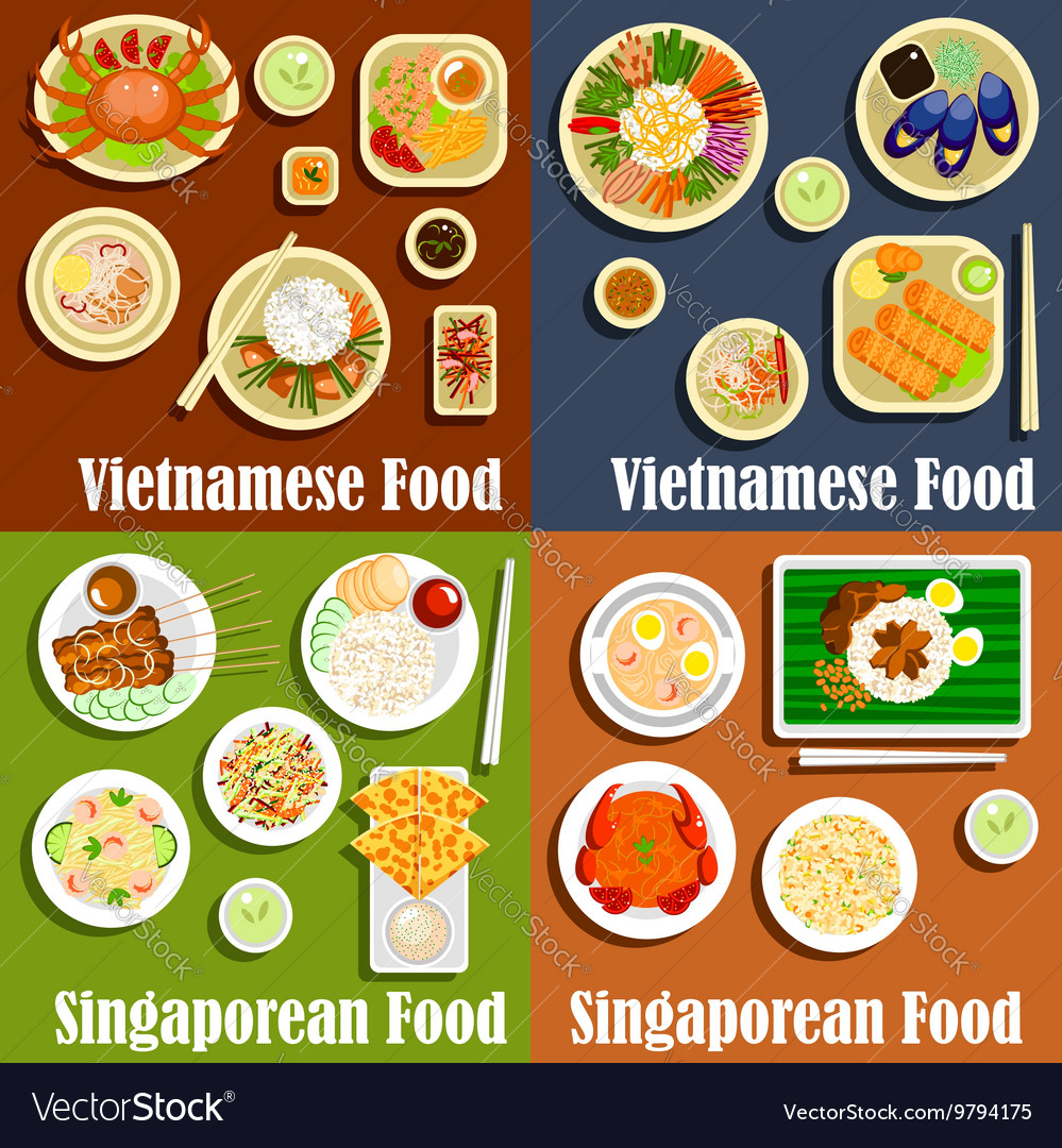 Vietnamese and singaporean cuisine dishes vector