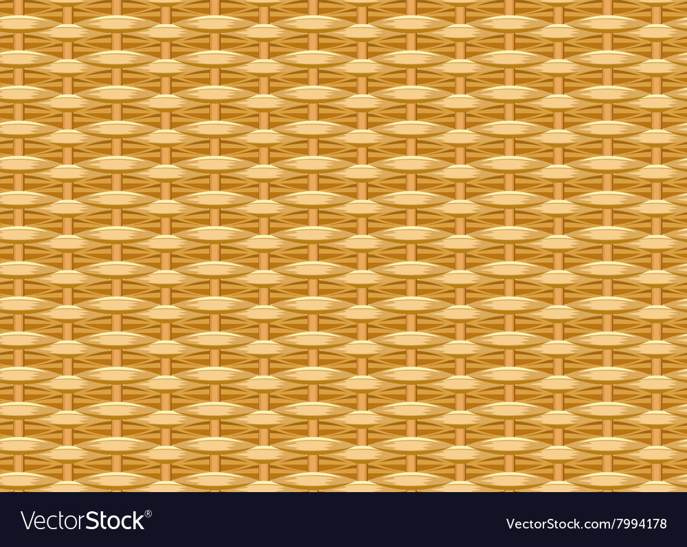 Seamless braided background wicker straw woven vector