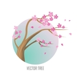 Tree Sakura Isolated on White vector image