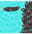 Decorative background with feather border vector image