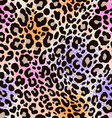 colorful animal print vector image