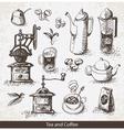 coffee tea vector image