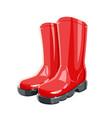 rubber garden boots vector image