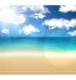 Tropical sunny summer coast vector image