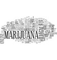 why marijuana should be legal text word cloud vector image