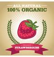 Organic Strawberry vector image vector image