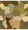 Abstract military or hunting camouflage background vector image