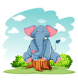 Elephant above the trunk vector image