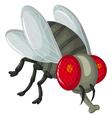Cute little cartoon flies vector image