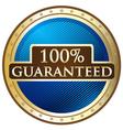 Hundred Percent Guaranteed vector image vector image