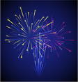 colored chinese new year fireworks vector image