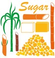 Sugar vector image
