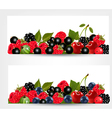 Two banners with delicious ripe berries vector image vector image