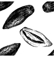 Hand drawn pepino melon seamless vector image