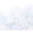 White snowflake background vector image