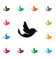 isolated bird icon swallow element can be vector image