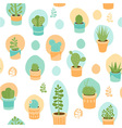 Succulent mix vector image