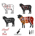 Lamb cuts vector image