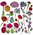 flowers set 380 vector image vector image