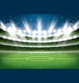 soccer stadium football arena vector image
