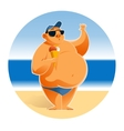 Big man on the beach vector image