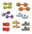 sport equipment healthy lifestyle elements vector image vector image