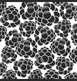 Blackberry black berries on white background vector image