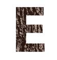 bark letter E vector image
