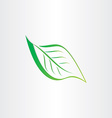 green stylized leaf icon design vector image