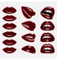 Set of glossy dark red Lips vector image