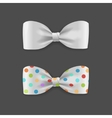 White Bow Tie Set vector image