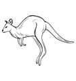 hand draw kangaroostyle sketch tattoo vector image vector image